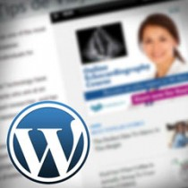 Anuncios en WordPress