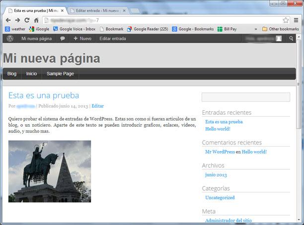 como usar wordpress - visitar pagina